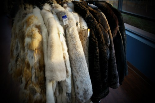 deja blue goodwill boutique furs